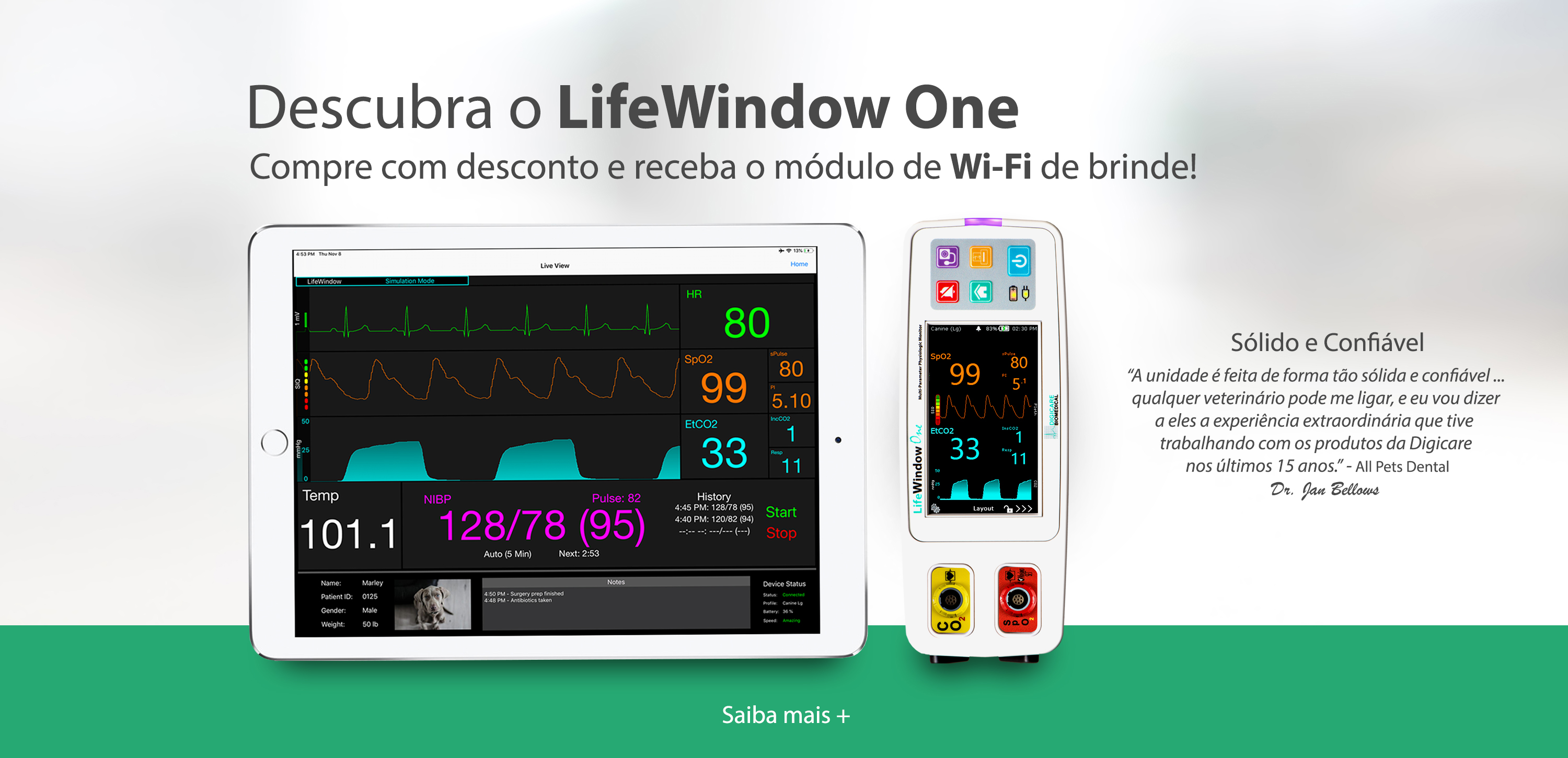 LifeWindow One