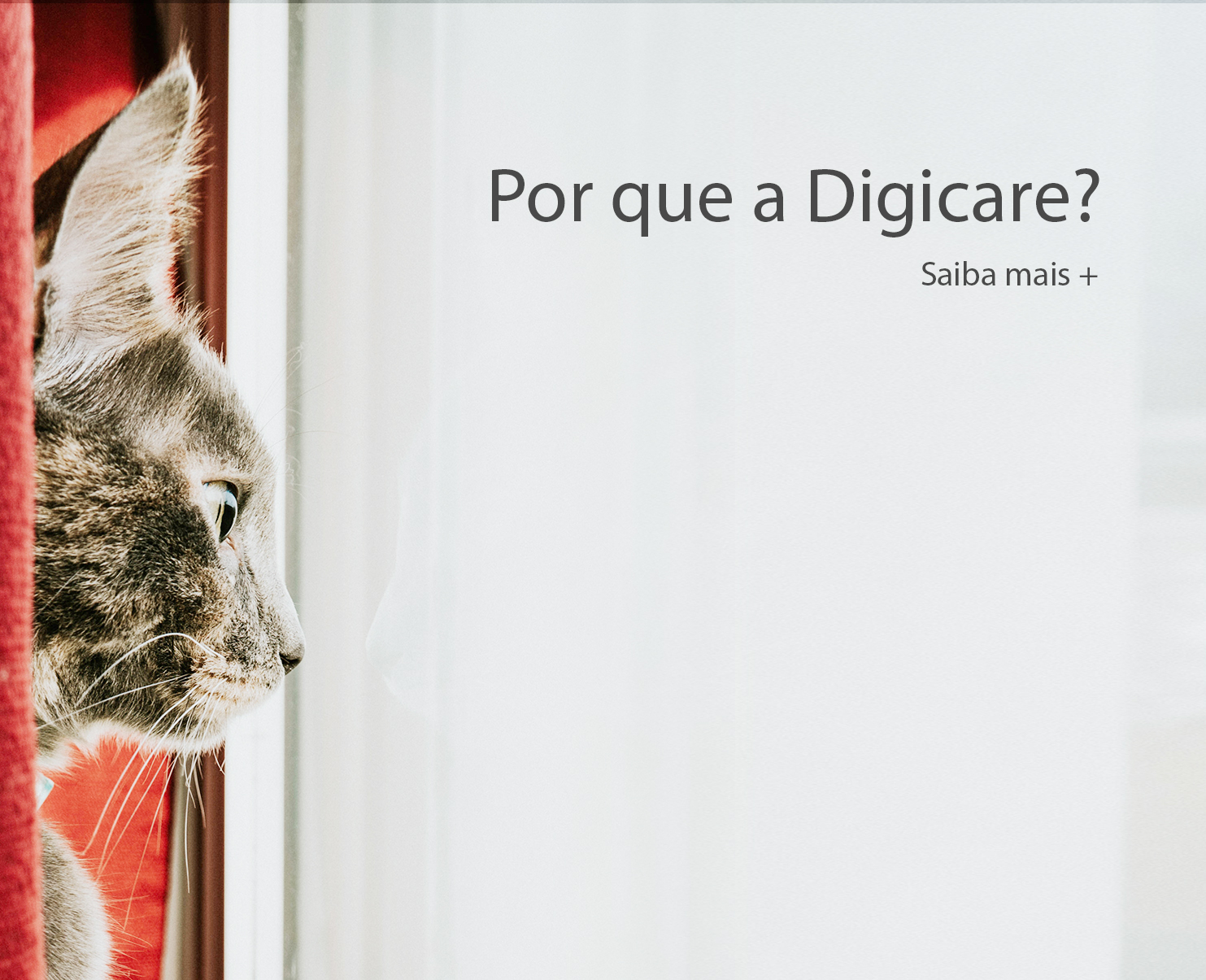 Why Digicare